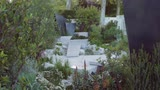 Thumbnail of Andy Sturgeon's Amazing 'Best in Show' Chelsea Garden