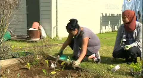 Video for Garden initiative to help teen mums