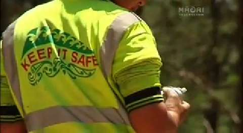 Video for Māori seek results in the forestry industry