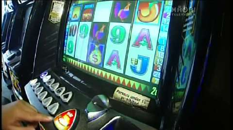 Video for Positive start for Gamble-free day