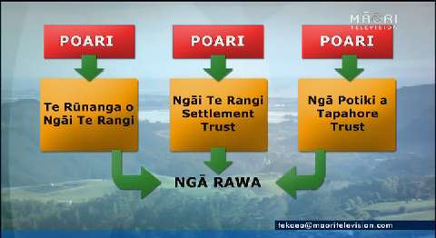 Video for Ngāi Te Rangi restructure three iwi trusts under one framework