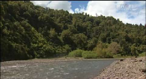 Video for Tūhoe hunters must also adhere to suspension in Te Urewera