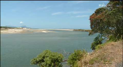 Video for Locals want to put a stop to littering on Uretiti Beach