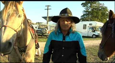 Video for Wild Kaimanawa horses tamed by horse trainer Tommy Waara