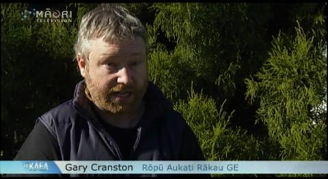 Video for Should genetically-engineered trees be planted in NZ forests?