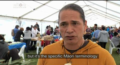 Video for National Māori Weavers biennial conference 2015