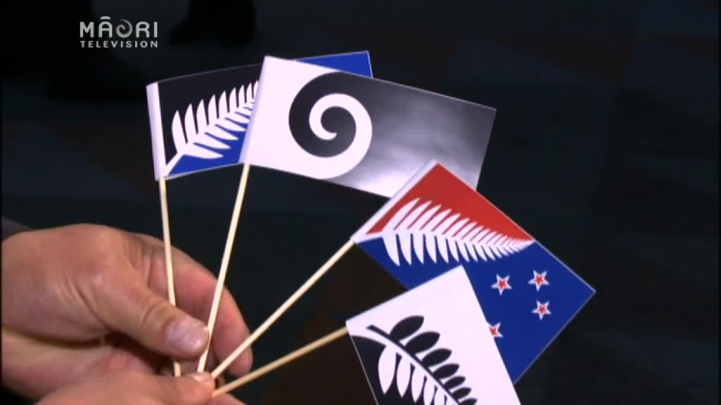 Video for NZ Flag referendum a waste of time from the start says MP