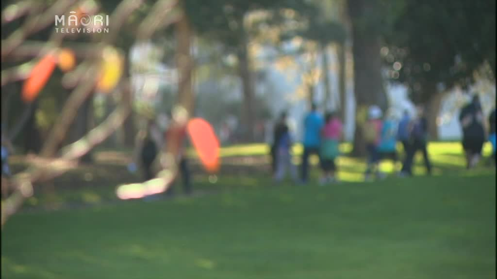 Video for Community Walks for the Puhinui