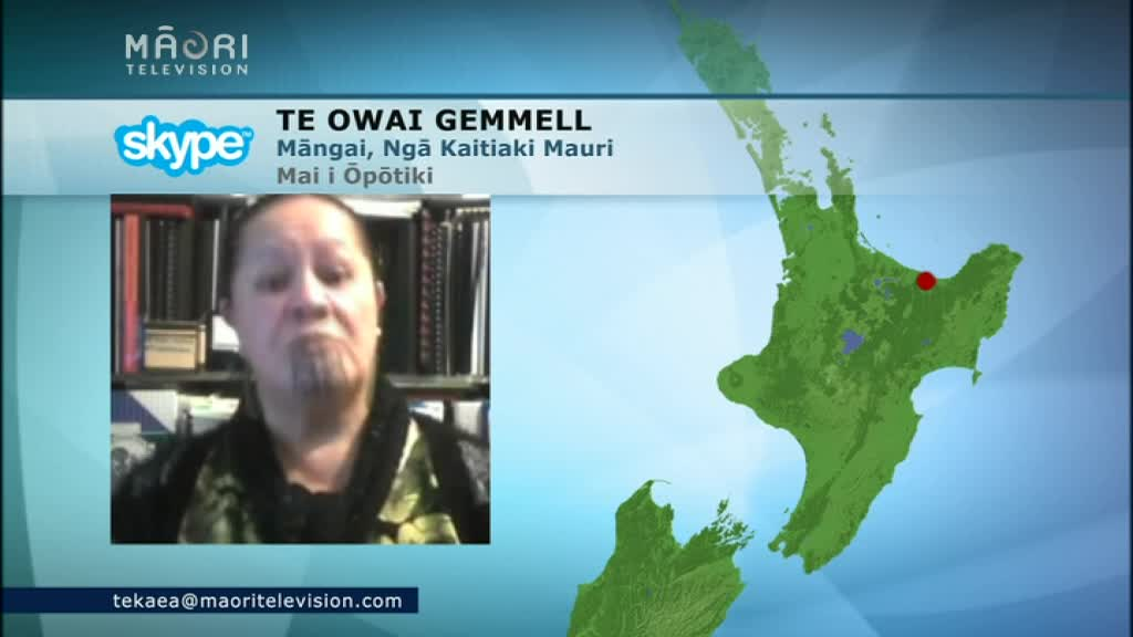 Video for Māori health providers hope funding will reach those in need