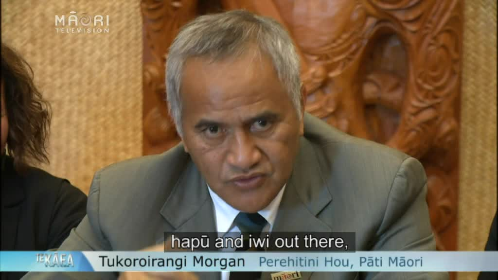 Video for New Māori Party president wants all Māori seats