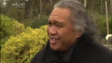 Video for Wehi whānau humbled by kind gesture