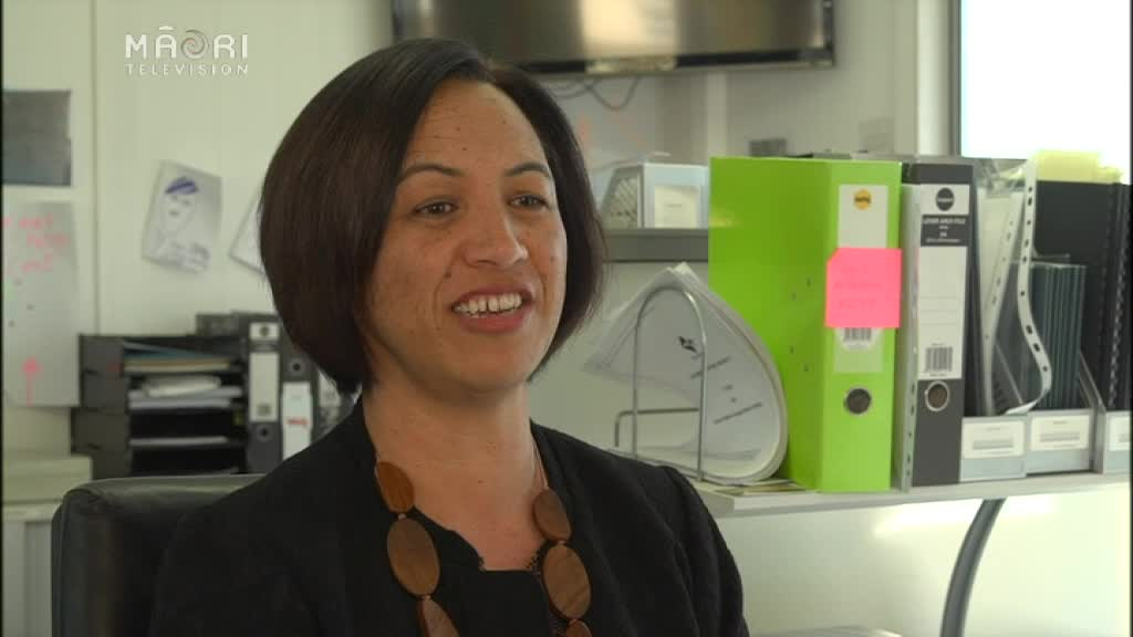 Video for New Charter School in Hawke's Bay opens in 2017