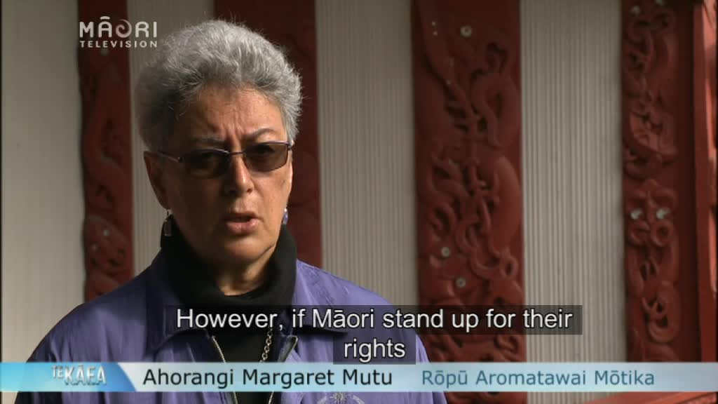 Video for Māori should utilise the UNDRIP - Professor Mutu