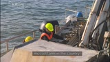 Video for Whakatōhea celebrates first harvest from Mussel farm
