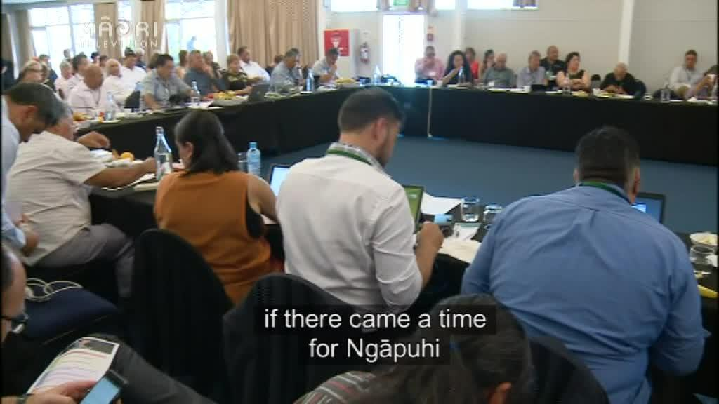 Video for Outside management recommended for Ngāpuhi assets