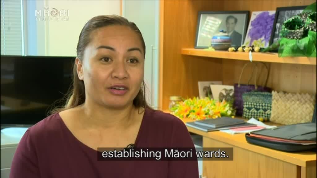 Video for Greens bill aims to even the stakes for Māori wards