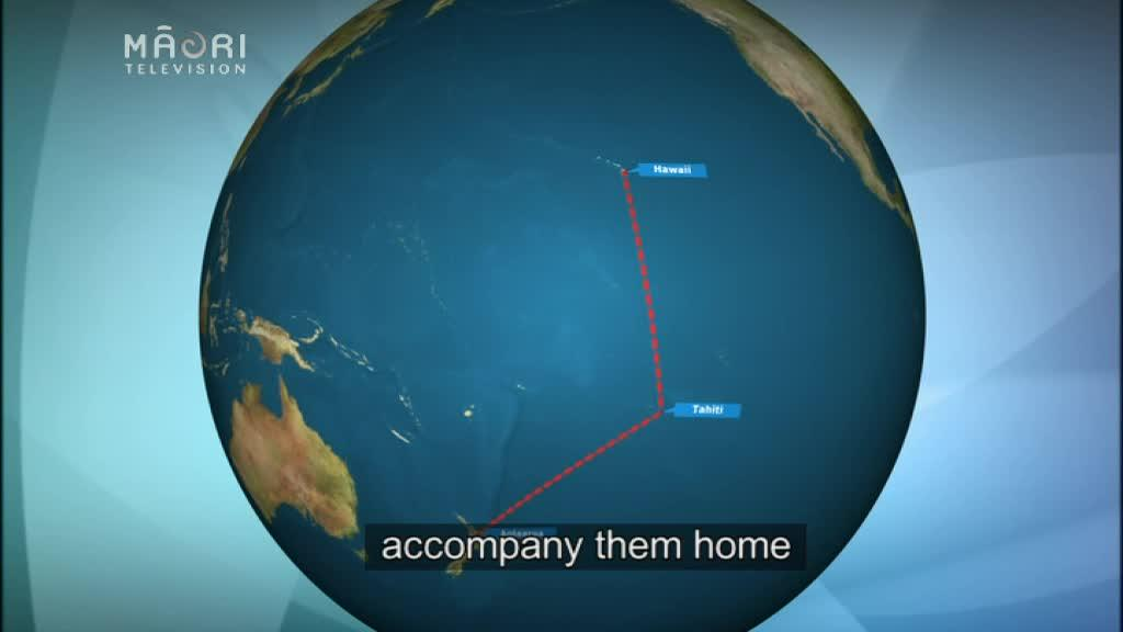 Video for Waka embarks on 12,000 km journey across Pacific
