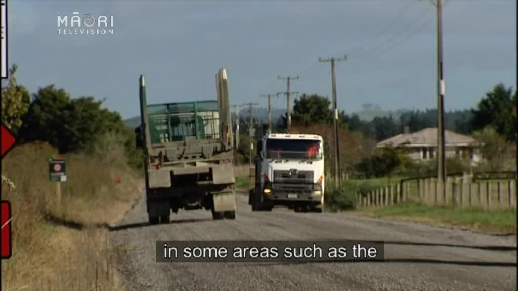Video for UN Road safety campaign asks NZ drivers to slow down