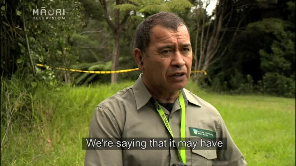 Video for Local iwi want to play their role in biosecurity