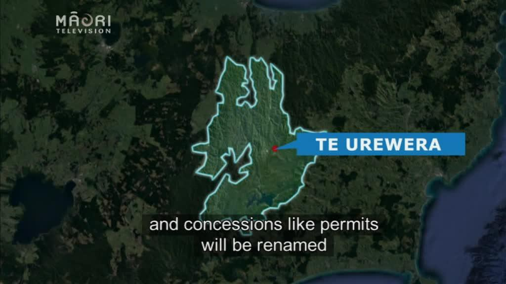 Video for Te Urewera management plan future of conservation – Kruger
