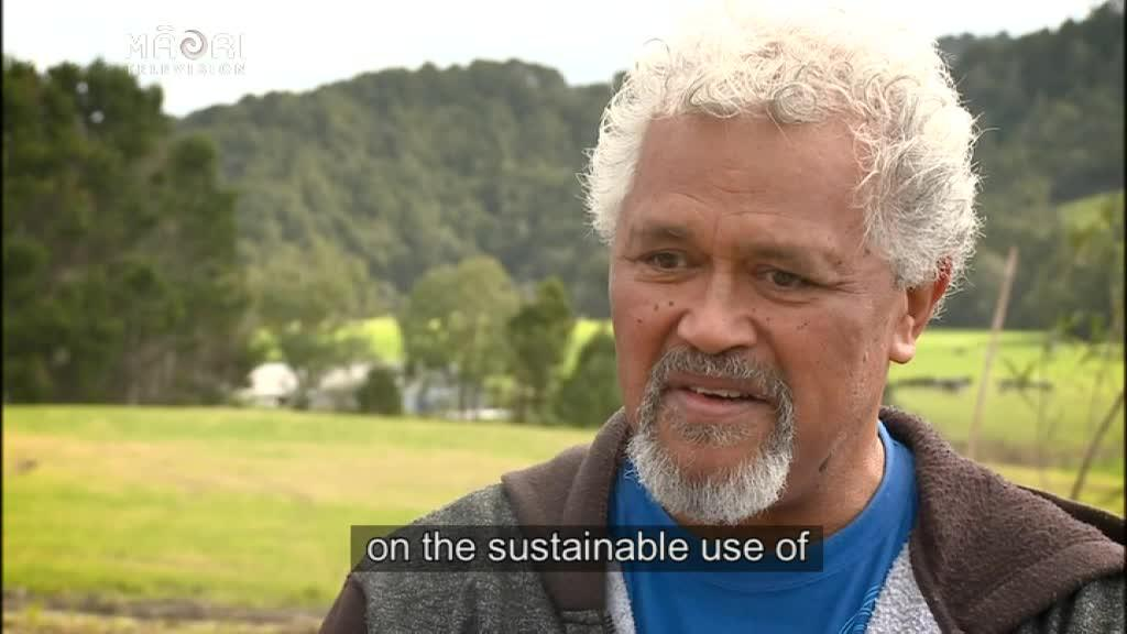 Video for Māori impressed at sustainable farming protocol