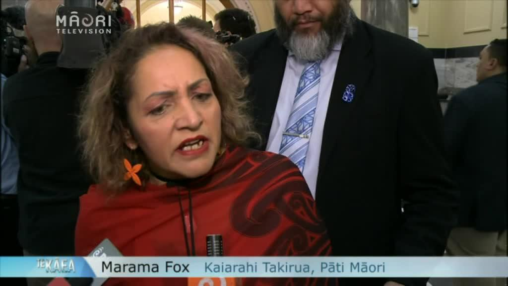 "Video for Labour Party intern scheme ""slave labour"" - Marama Fox"