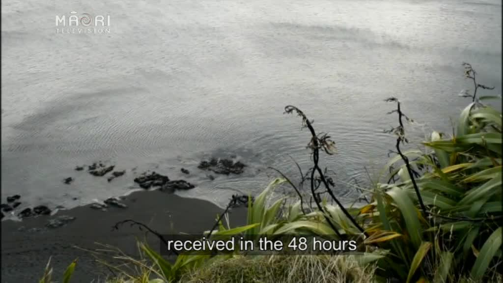 Video for Hundreds of hapū protect their rights under the customary marine title