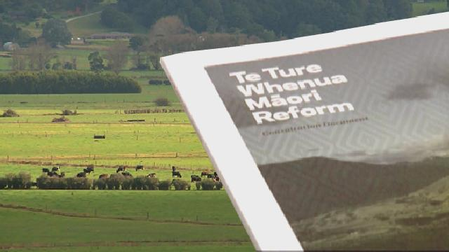 Video for Māori Land Bill decision a victory for Māori land owners – Meka Whaitiri
