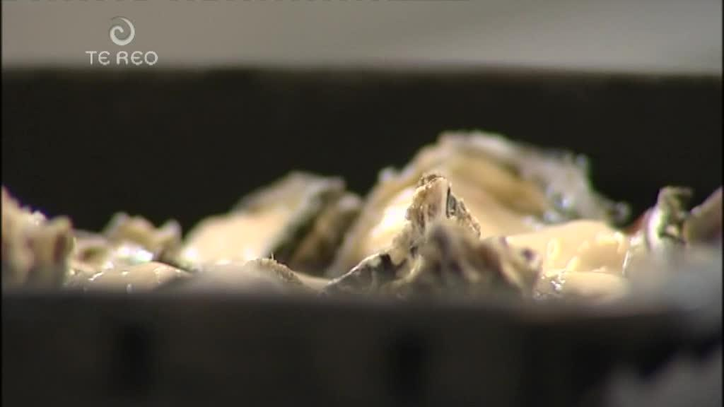 Video for Police warn against black market oysters