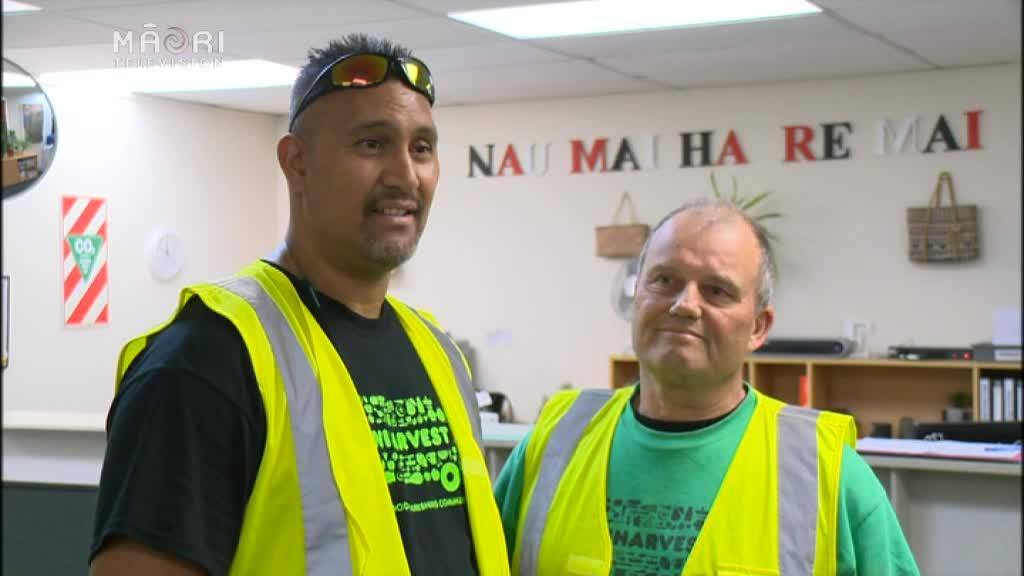 Video for Kiwi Harvest delivers free food to charities in need