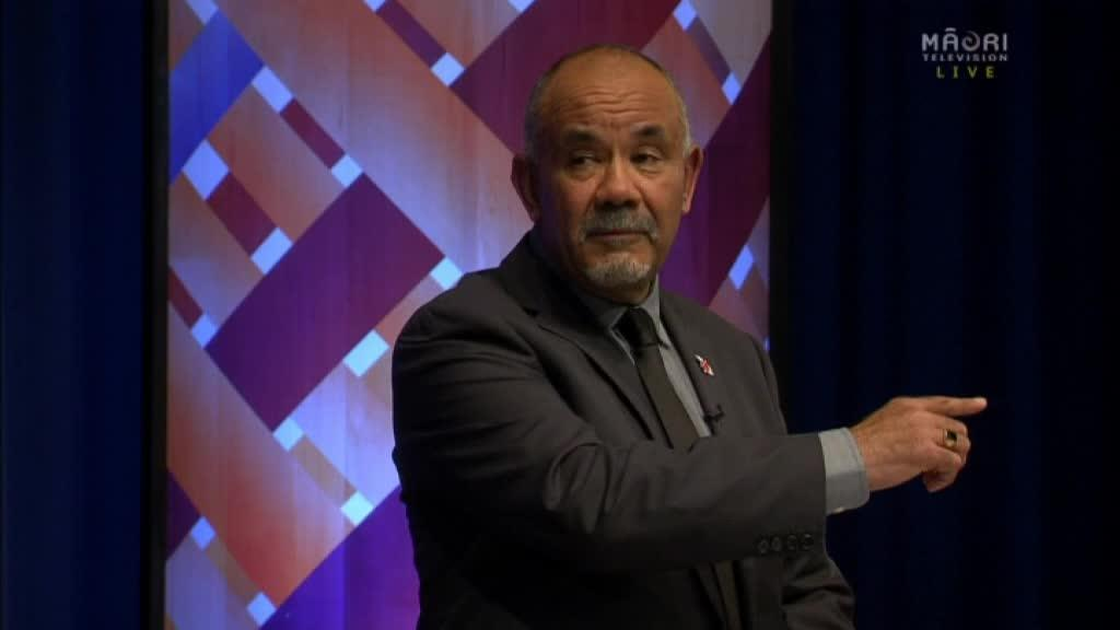 """Video for Māori Party co-leader would """"struggle"""" to work with Winston Peters"""