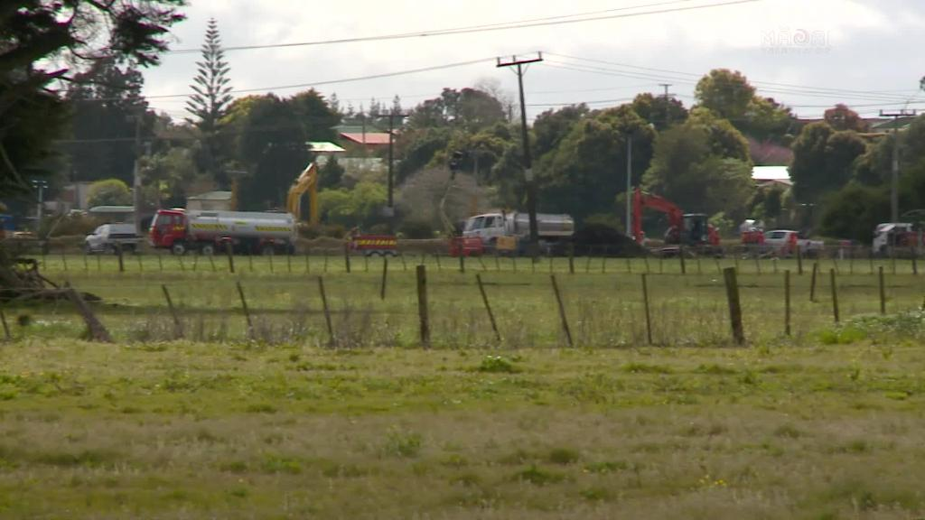 Video for The Greens call for rigorous processes around swamp kauri excavation