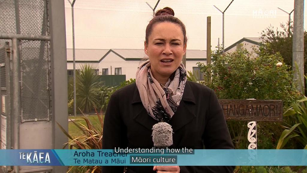 Video for Australia look to Māori model to reduce indigenous incarceration
