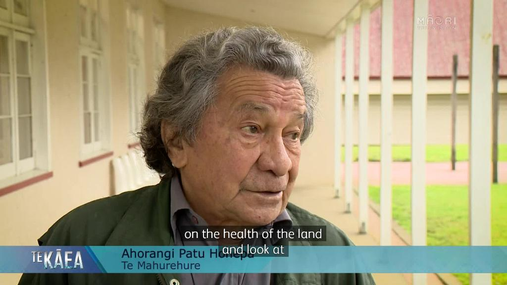 Video for Iwi chairs want Independent Māori Land Services in the regions