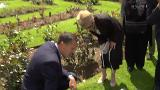 Video for New archaeological discovery at ancient Tauranga Pā