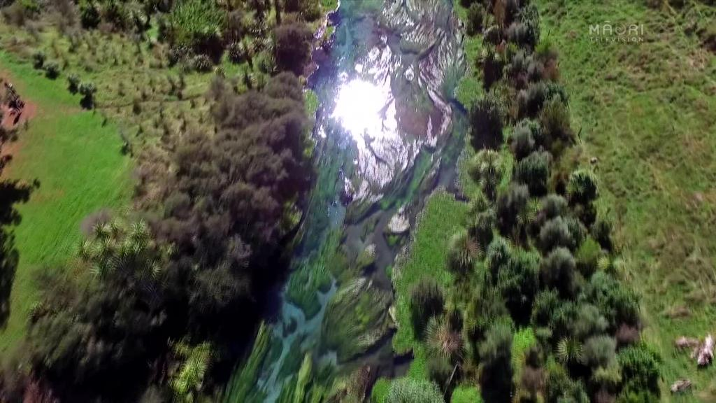 Video for Water company withdraws Putaruru Blue Spring application