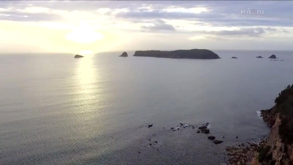 Video for Native Affairs - Who Will Save Our Whenua?