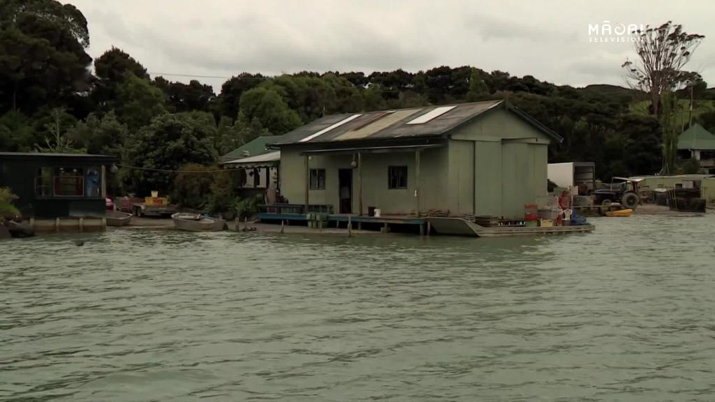 Video for Build of private wharf on shellfish beds angers locals
