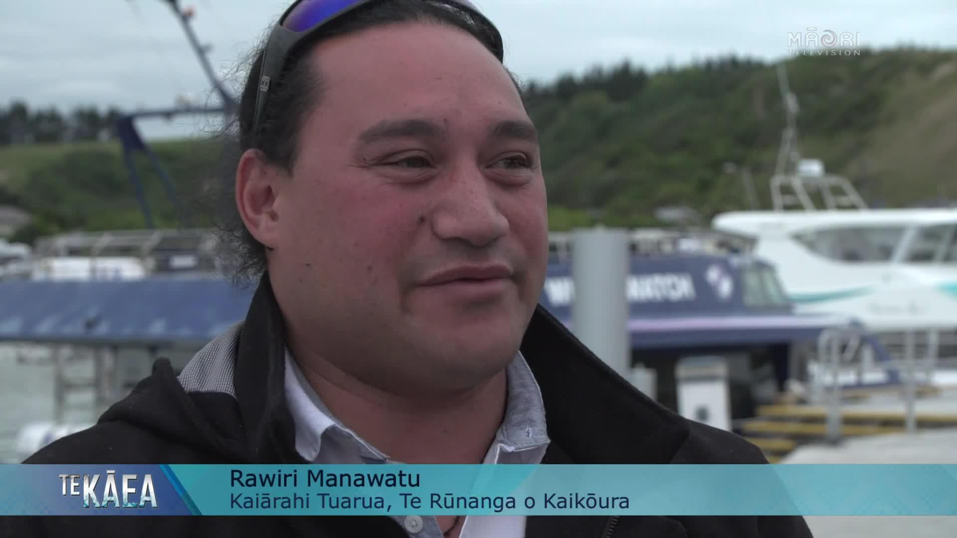 Video for New marina brings new beginnings for Kaikōura