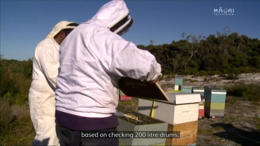 Video for New Mānuka honey definition and regulations for NZ exporters