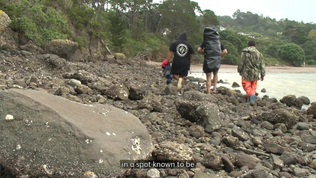 Video for Kaimoana comes second to safety - Diver