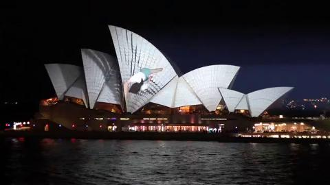 Vivid LIVE: Lighting The Sails - URBANSCREEN - 4:16