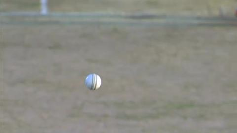 M25:  NZ v Ned - Martin Guptill Wicket