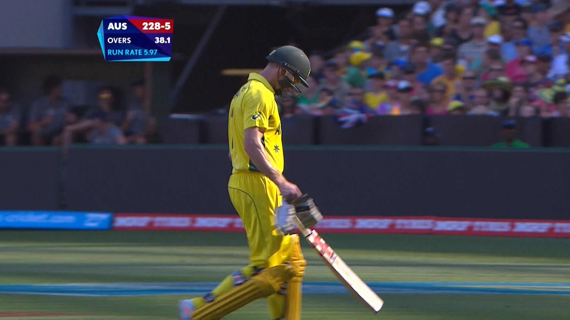 George Bailey wicket – ENG vs AUS