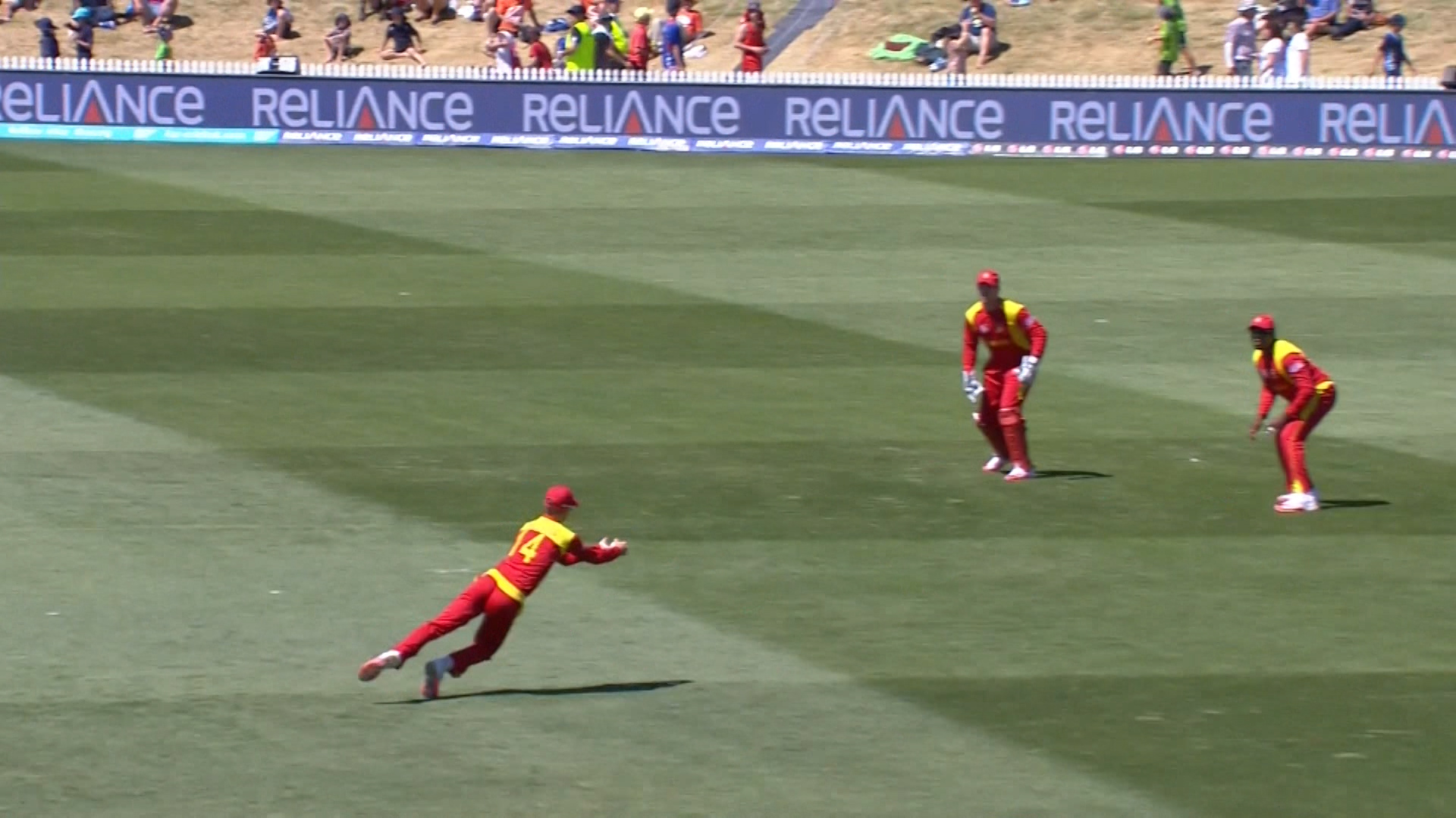 Outstanding Catch by Williams – ZIM vs UAE