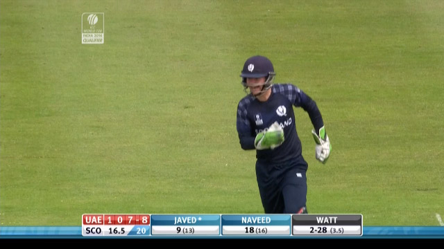 Brilliant Catches by Mathew Cross