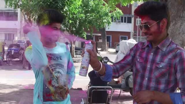 Cricket fans celebrate Holi, the Hindu festival of colour