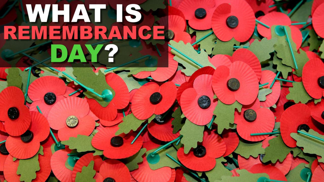 how to wear a poppy for remembrance day 2017 kent live