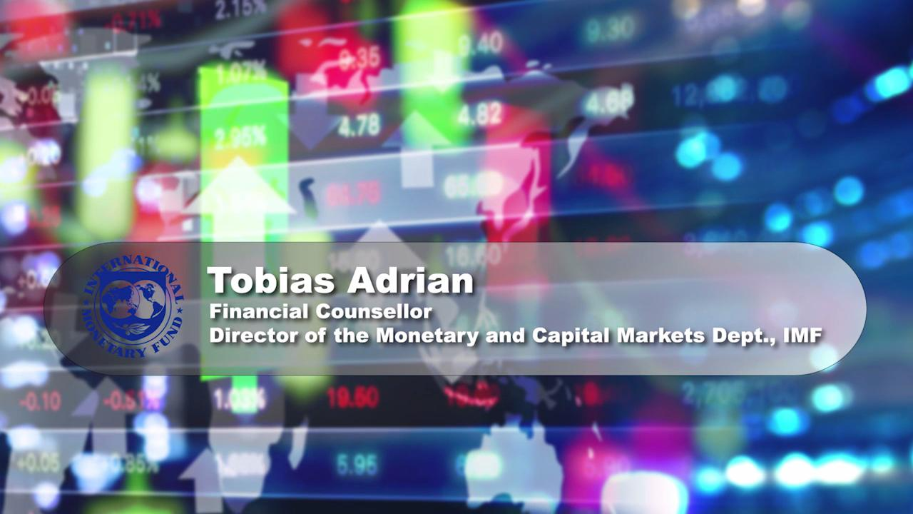 Meet Tobias Adrian, the new IMF Financial Counselor