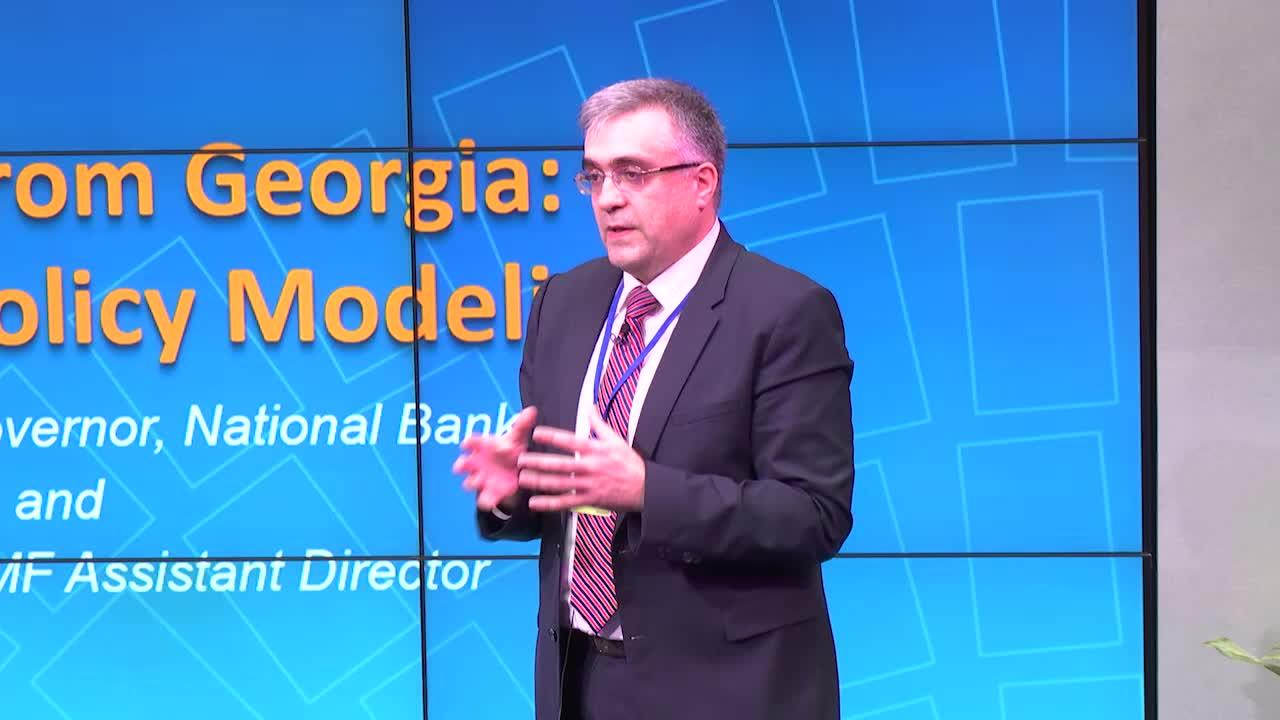Postcard from Georgia: Monetary Policy Modeling